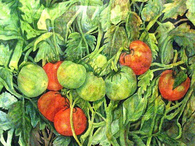 Art: Sun Kissed Tomatoes by Artist Ulrike 'Ricky' Martin