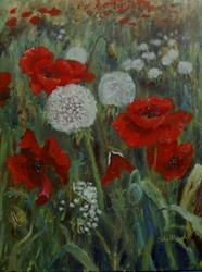 Art: Poppies and Dandelion Clocks by Artist John Wright