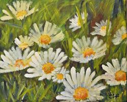 Art: Daisies (5) by Artist John Wright