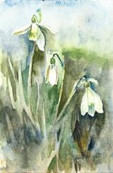 Art: Snowdrops by Artist John Wright