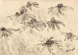 Art: Rudbekia (3) by Artist John Wright