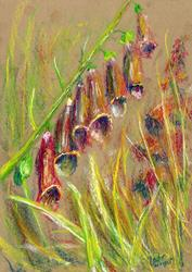 Art: Foxgloves (9) by Artist John Wright