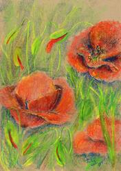 Art: Poppies (45) by Artist John Wright