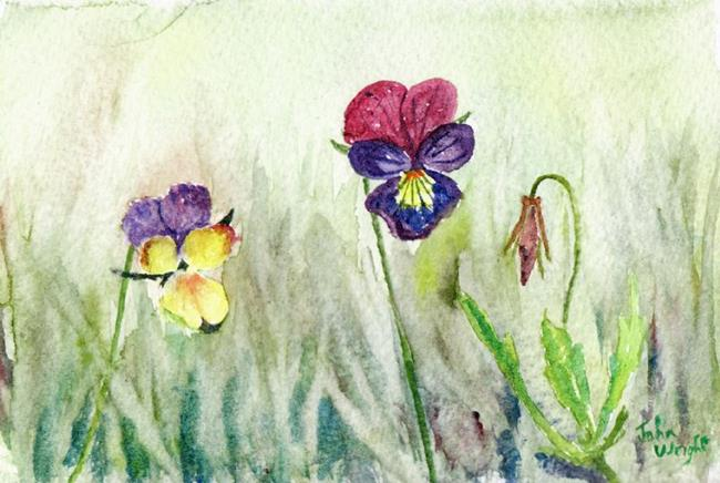 Art: Wild pansies by Artist John Wright