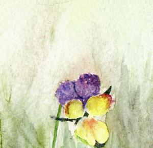Detail Image for art Wild pansies