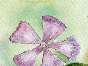 Detail Image for art Lesser periwinkle