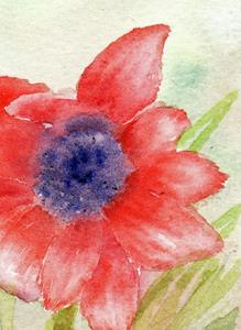 Detail Image for art Scarlet anemone