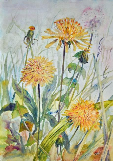 Art: Dandelions by Artist John Wright