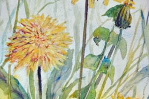 Detail Image for art Dandelions