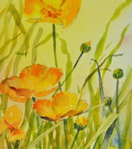 Detail Image for art Buttercups