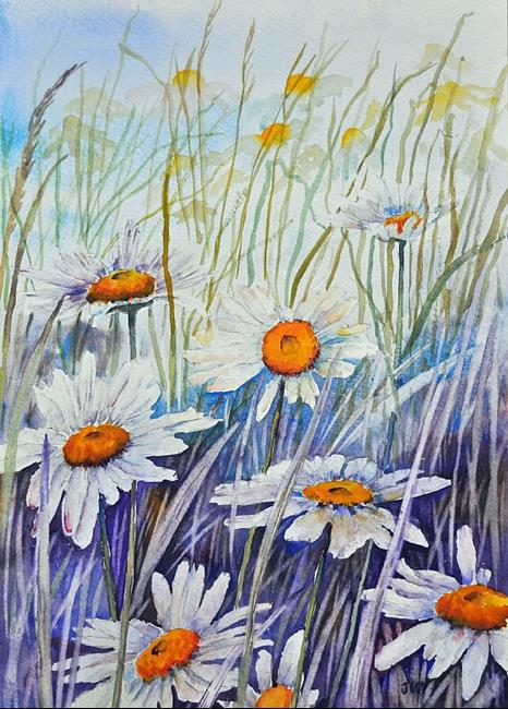 Art: Ox eye daisies by Artist John Wright