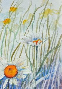 Detail Image for art Ox eye daisies