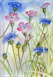 Art: Cornflowers and corncockles by Artist John Wright