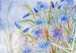 Art: Perennial flax by Artist John Wright