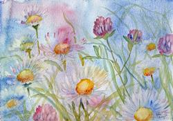 Art: Daisies and red clover by Artist John Wright