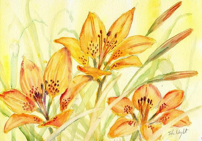 Art: Prairie lillies by Artist John Wright