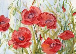 Art: Poppies (50) by Artist John Wright