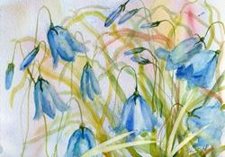 Art: Harebells (5) by Artist John Wright