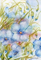 Art: Perennial flax (3) by Artist John Wright