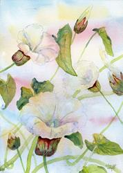 Art: Bindweed (3) by Artist John Wright