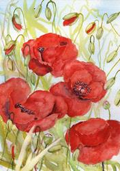 Art: Poppies (54) by Artist John Wright