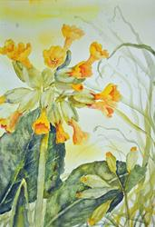 Art: Cowslips (5) by Artist John Wright