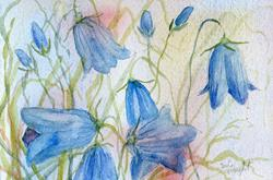 Art: Harebells (6) by Artist John Wright