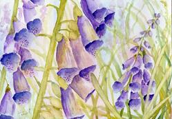 Art: Foxgloves (11) by Artist John Wright