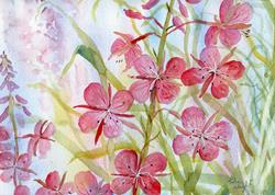 Art: Rosebay willowherb (3) by Artist John Wright