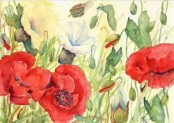 Art: Poppies and bindweed (3) by Artist John Wright