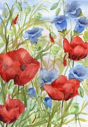 Art: Poppies and Canterbury Bells (2) by Artist John Wright