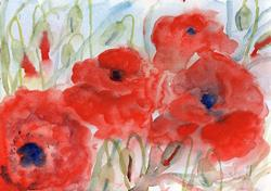 Art: Poppies (68) by Artist John Wright