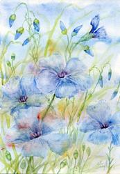Art: Perennial flax (6) by Artist John Wright