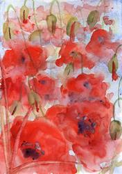 Art: Poppies (70) by Artist John Wright