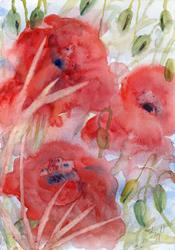 Art: Poppies (71) by Artist John Wright