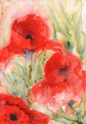 Art: Poppies (72) by Artist John Wright