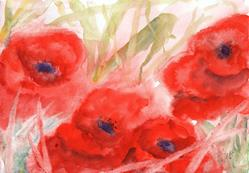 Art: Poppies (73) by Artist John Wright