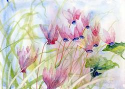 Art: Wild cyclamen (7) by Artist John Wright