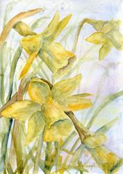Art: Daffodils (28) by Artist John Wright