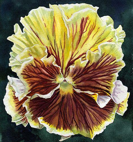Art: Pansy II by Artist Mark Satchwill