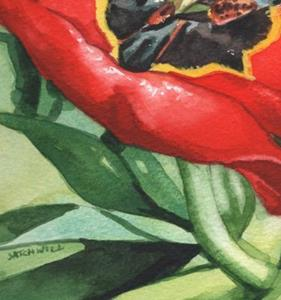 Detail Image for art Big Red Tulip