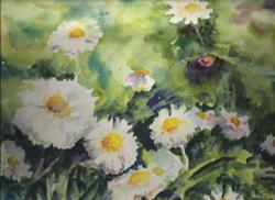 Art: Daisies by Artist John Wright