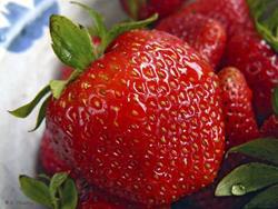 Art: Berry Nice! by Artist Deanne Flouton