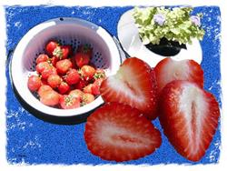 Art: Strawberries by Artist Deanne Flouton