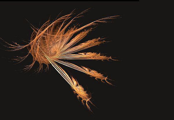 Art: Gold Dance by Artist Carolyn Schiffhouer