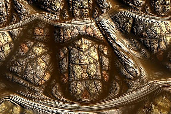 Art: Tortoise Shell by Artist Alma Lee