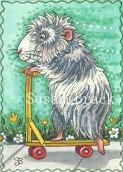 Art: GUINEA PIG RACER by Artist Susan Brack