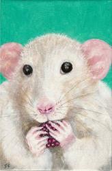 Art: If you give a rat a raspberry... by Artist Sara Field