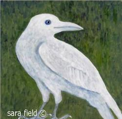 Art: The White Crow by Artist Sara Field