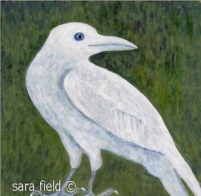 Art: The White Crow by Artist Sara Field
